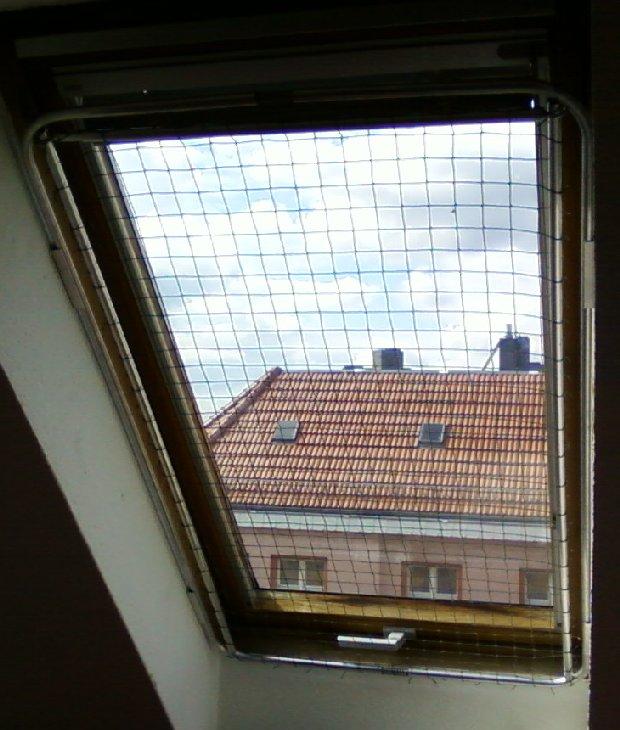 Fenster Dachschräge x