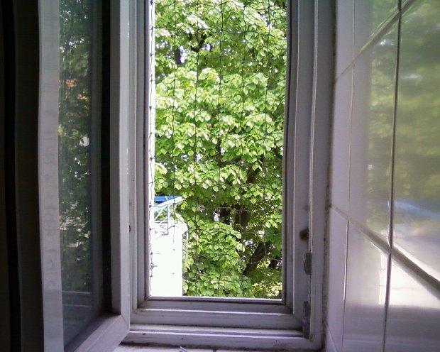 Fenster Drahtseil 1 x