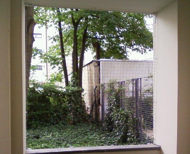 Fenster Drahtseil 2 x